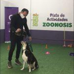 Zoonosis de Quilmes suma atención primaria, castración de equinos, atención de animales exóticos y el servicio de un adiestrador